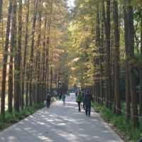 上海植物園